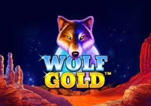 ทดลองเล่น รีวิวสล็อต wolf gold